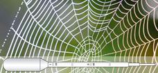Spiders_web_Graduated_Pipette_228x105_p